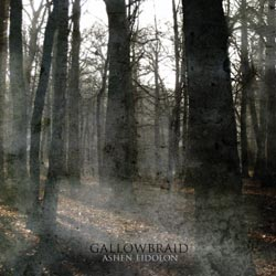 GALLOWBRAIDcoverpic2010