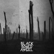 BLACK BONED ANGEL: Verdun
