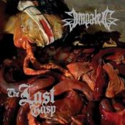 IMPALED: The Last Gasp