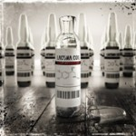 "LACUNA COIL: digitale Single ""Fire"" am 15.06.12 und Tourdates"