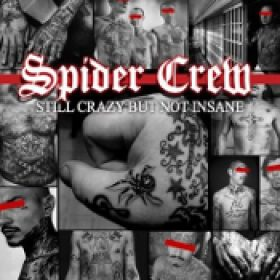 SPIDER CREW: Still Crazy But Not Insane