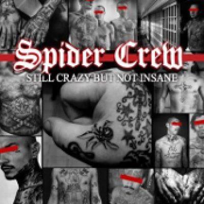 SPIDER CREW: Still Crazy But Not Insane