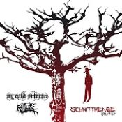 MY COLD EMBRACE / RAPTURE: Schnittmenge