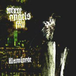 WHERE ANGELS FALL: Illuminate