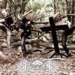 ALVENRAD: arbeiten an zweitem Alben