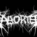 ABORTED: nehmen neues Album auf und kommen auf Tour