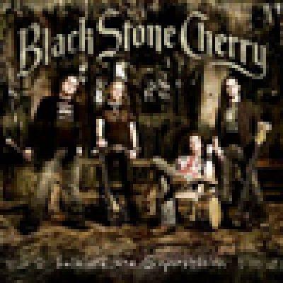 BLACK STONE CHERRY: komplettes Album auf MySpace