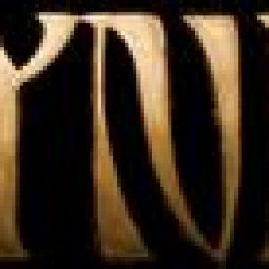 CYNIC: ´Traced In Air´ im Oktober 2008