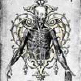DARK TRANQUILLITY:  ´Where Death Is Most Alive´ – neuer Song der DVD online
