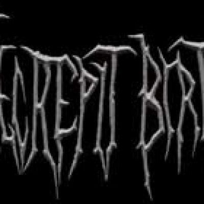 DECREPIT BIRTH: im Studio