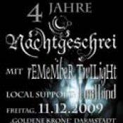 NACHTGESCHREI: Konzert in Darmstadt