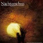 NACHTGESCHREI: Songs von neuen Album ´Hoffnungsschimmer´ online