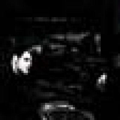SYBREED: neuer Bassist und neues Album `The Pulse Of Awakening`