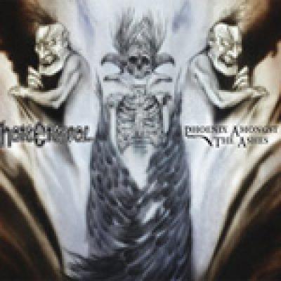 HATE ETERNAL: neues Album ´Phoenix Amongst the Ashes´