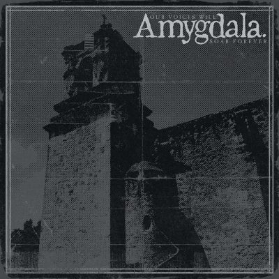 "AMYGDALA: Video vom ""Our Voices Will Soar Forever"" Album"