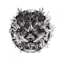 "A PALE DECEMBER: streamen ""The Shrine of Primal Fire""-Album"