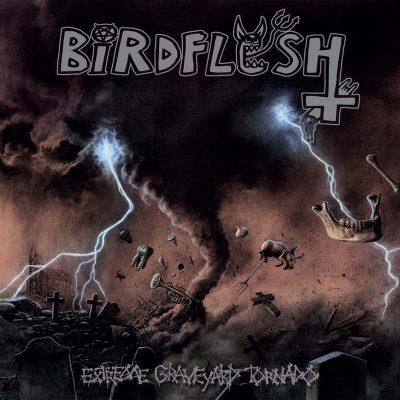 """BIRDFLESH: dritter Song vom neuen """"Extreme Graveyard Tornado"""" Album"""