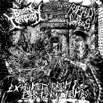 """BRAIN CORROSION / RIPPED TO SHREDS: neue Split """"Exhumed From Eastern Tombs"""" aus Taiwan"""