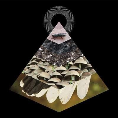"""BELUS: Track vom """"Apophenia""""-Album"""