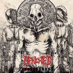 "BENIGHTED: Video-Clip zu ""Reptilian"""