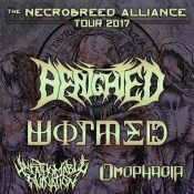 """BENIGHTED, WORMED, UNFATHOMABLE RUINATION, OMOPHAGIA: """"The Necrobreed Alliance""""-Tour 2017"""