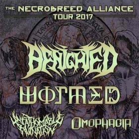 "BENIGHTED, WORMED, UNFATHOMABLE RUINATION, OMOPHAGIA: ""The Necrobreed Alliance""-Tour 2017"