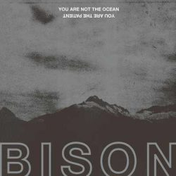 "BISON B.C.: Track vom ""You Are Not the Ocean You Are the Patient""-Album online"