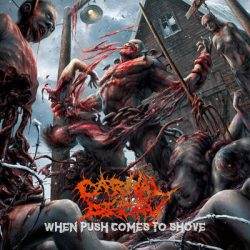 "CARNAL DECAY: Lyric-Video von ""When Push Comes to Shove"" EP"