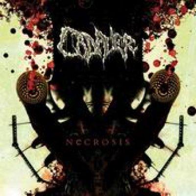 CADAVER: Necrosis