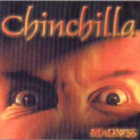 CHINCHILLA: Madness