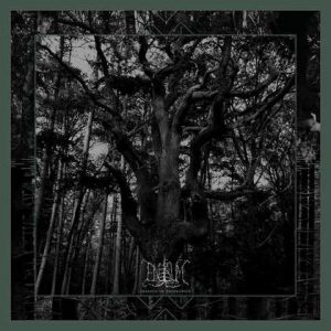 "ENISUM: streamen ""Seasons of Desolation""-Album"