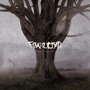 "FIMBULTYR: kündigen zweites Album ""Niddikter"" an"