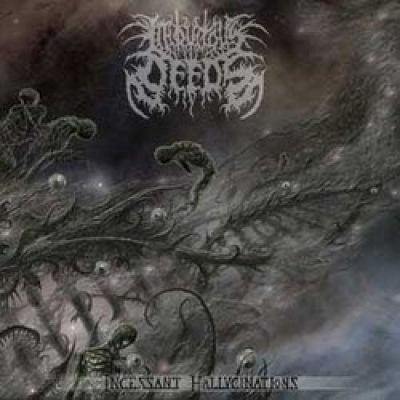 "INIQUITOUS DEEDS: Track und Details zu ""Incessant Hallucinations"""