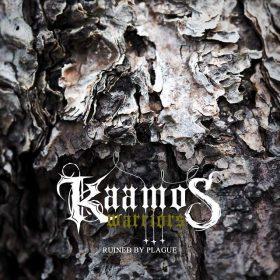 "KAAMOS WARRIORS: erste Single vom ""Shadows Of Northern Chaos"" Album"