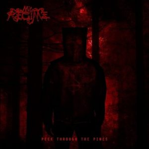 """MY REGIME: kündigen """"Peek Through The Pines"""" Album an"""