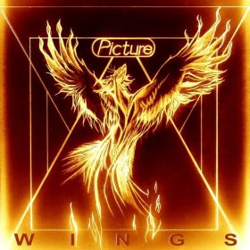 """PICTURE: neues Album """"Wings"""", Video zu """"Stroke"""" veröffentlicht"""