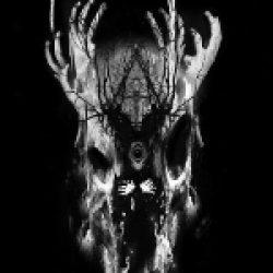 PHANTOM WINTER: Nachfolgeband von OMEGA MASSIF