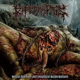 "RAPED BY PIGS: Neues Album ""Mental Diseases and Congenital Malformation"""