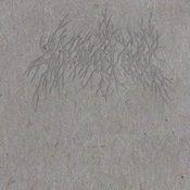 ULRIKE SEROWY: Skogtatt (Buch)