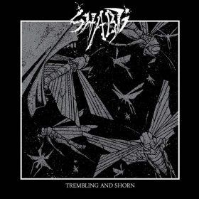 "SHABTI: Weiterer Track vom ""Trembling and Shorn"" Album"