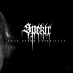 SPEKTR: The Near Death Experiences
