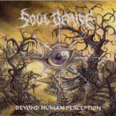 SOUL DEMISE: Beyond Human Perception