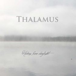 THALAMUS: Hiding From Daylight