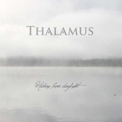 THALAMUS: Hiding From Daylight