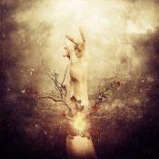 "THE BREATHING PROCESS: Track vom ""Samsara"" Album"