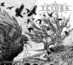 """TETHRA: Video-Clip zu """"Like Crows For The Earth"""""""