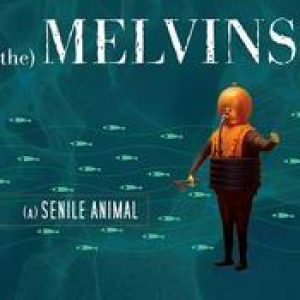 THE MELVINS: (A) Senile Animal