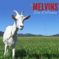 MELVINS: Neuer Song ´American Cow´ im Stream