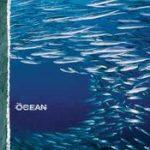 THE OCEAN: Fluxion