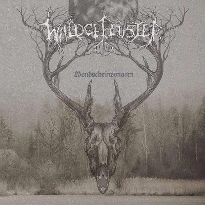 """WALDGEFLÜSTER: Neues Album """"Mondscheinsonaten"""""""